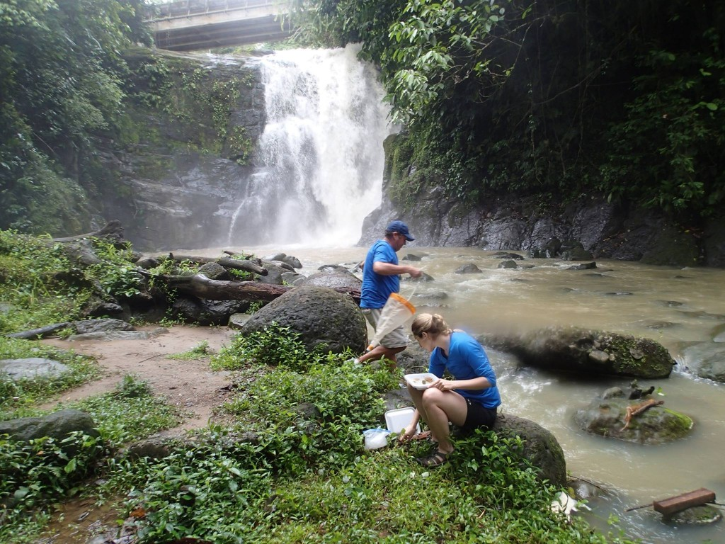 Petra Kranzfelder and Ron Tchida collect chironomid skins from stream near waterfall in Bribri, Limón, Costa Rica. Photo: Lynne Tchida