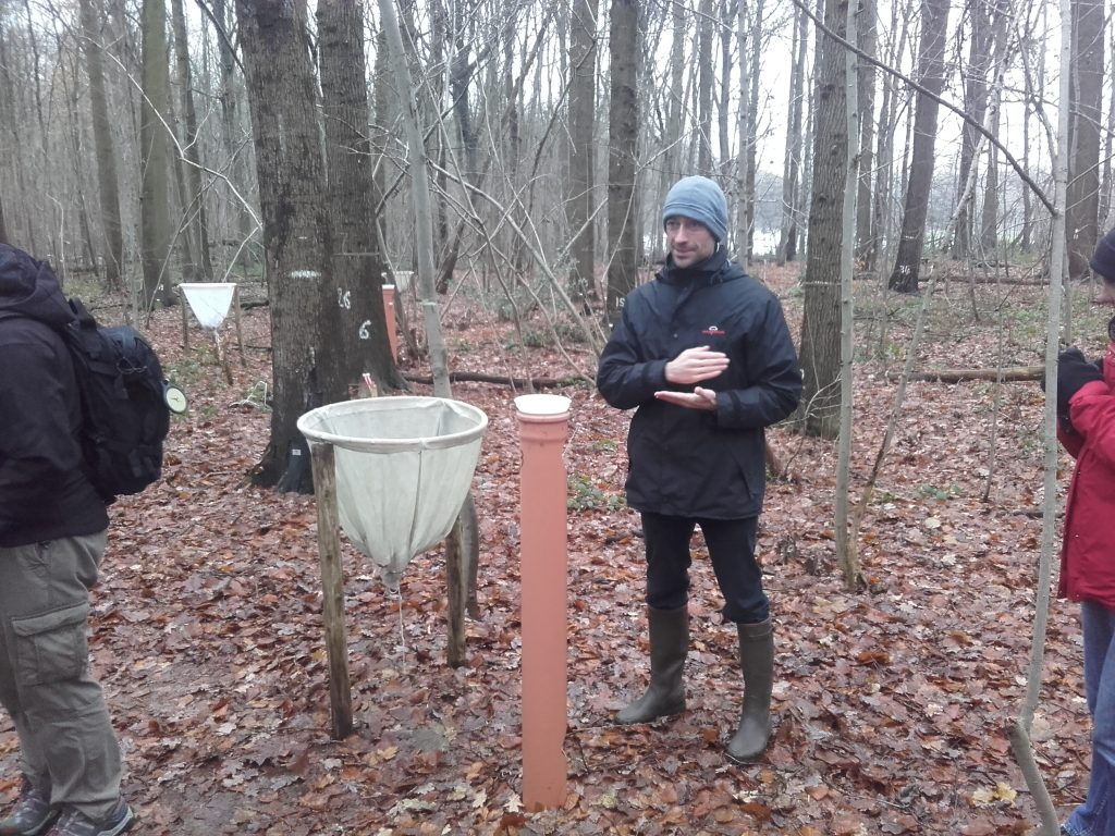 Rain water is collected in the vertical brown pipes and dead leaves fall from the trees above and are collected in the circular nets that you see in the picture. Reseachers from Ghent University take these samples to the lab and analyse them. By doing this over several decades (25 years so far) you can start to tease apart the between-year variation from the long trends in the data which are rather due to large scale patterns in for example pollution and climate and land-use changes.