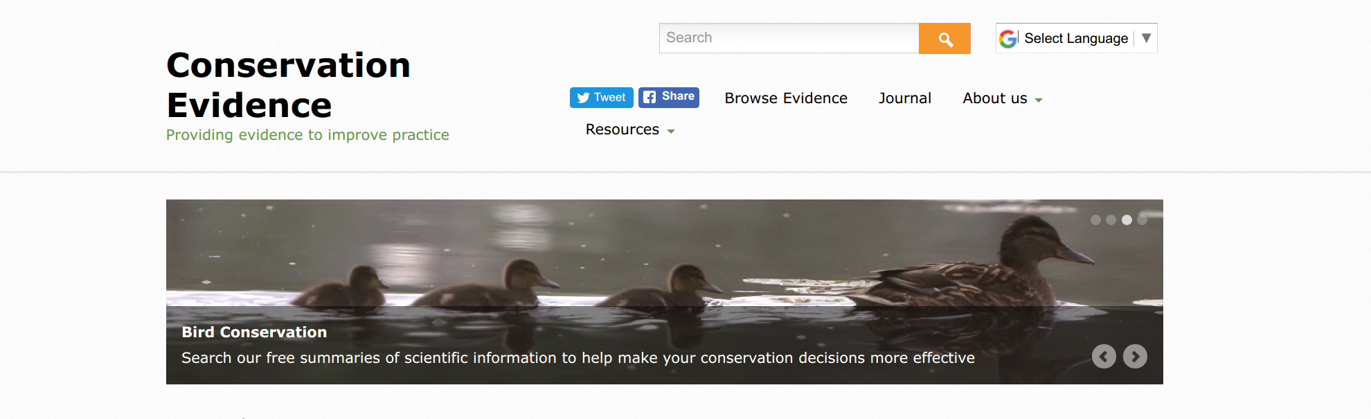 Conservation Evidence makes global conservation research available to anyone