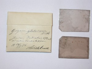 Moss sample from the herbarium of the NTNU Vitenskapsmuseet. The envelope contains the specimen and two mica slides. Note that all the information about the specimen (name, locality, ecology, date, and collector) was written on the envelope. (Picture: K. Hassel)