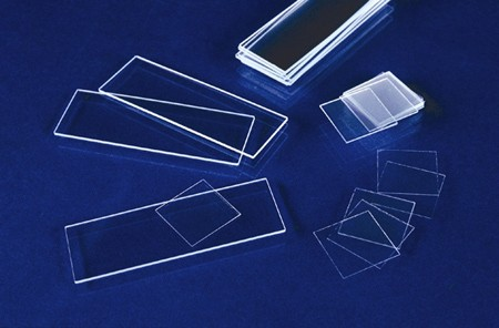Glass elements used to make a microscopic preparation: slide and coverslip (the last one square or rectangular, but always thinner and smaller than the slide). (Picture: http://showpigs.com/store2/supplies/semen-handling/microscope-slide-covers.html)