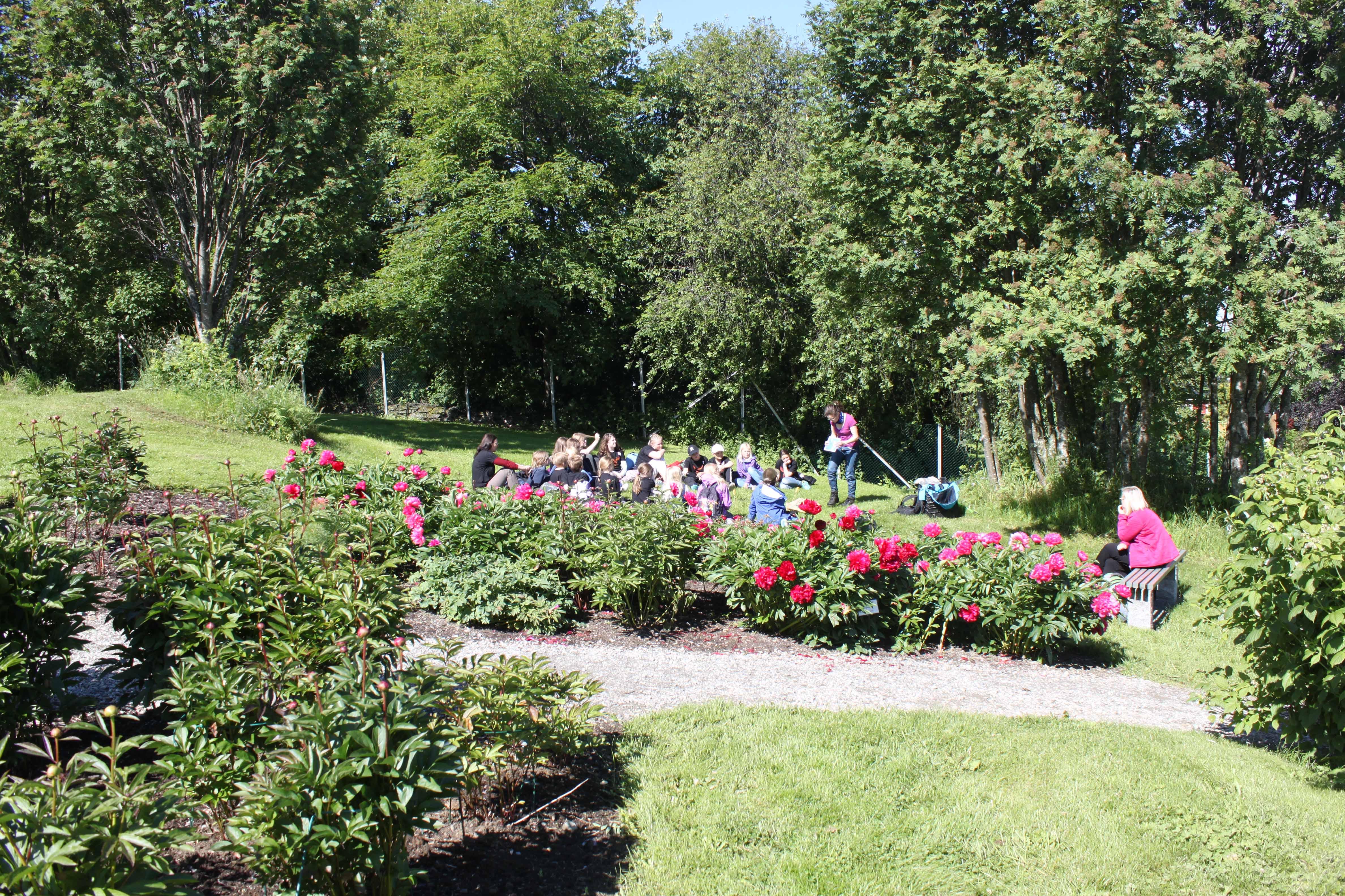 Nydelig vær i hagen på Ringve