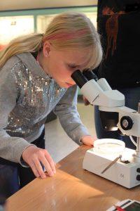 Å se hvilken type pollen som er i mikroskopet er ikke så lett.